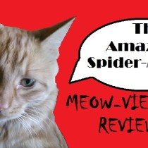 Spoiler free Amazing Spider-Man 2 review