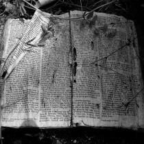Secret Bible